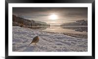 Llwyn Onn winter landscape, Framed Mounted Print