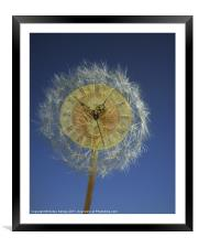 Wish Upon A Time, Framed Mounted Print