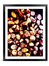 PEBBLES ON THE BEACH, Framed Mounted Print