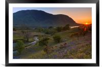 Rannerdale Valley Bluebells at Sunset, Framed Mounted Print