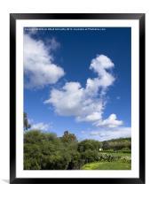 Mediterranean Countryside, Framed Mounted Print