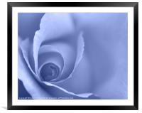 Pale Blue Floral Wall Art, Framed Mounted Print