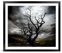 lightning tree 2, Framed Mounted Print
