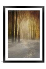 spooky misty woodland, Framed Mounted Print