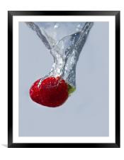Strawberry Drop., Framed Mounted Print