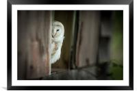 Yes, I can see you :o), Framed Mounted Print