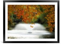 Wroclaw Park, Framed Mounted Print