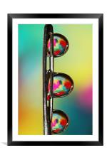 Needle with Tropical Droplets, Framed Mounted Print