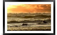 Evening Kinard Beach, Framed Mounted Print