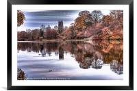 Lymm Dam, Cheshire., Framed Mounted Print