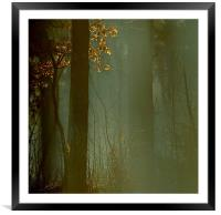 Shine your ever loving light on me, Framed Mounted Print