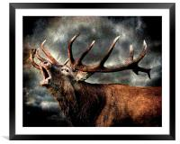 Call of the wild, Framed Mounted Print