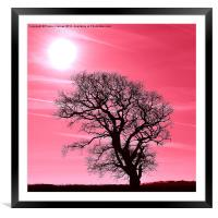 Pink Sky at Night, Framed Mounted Print