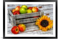 apples and flowers, Framed Mounted Print