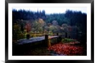 Loch Ard autumn leaves, Framed Mounted Print