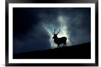 Stag silhouette, Framed Mounted Print