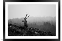 Above the Mist, Framed Mounted Print