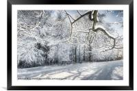 Winter Sparkle, Framed Mounted Print