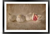 Garlic and Textures, Framed Mounted Print