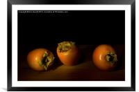 Persimmon Trio - 1, Framed Mounted Print
