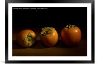 Persimmon Trio - 2, Framed Mounted Print