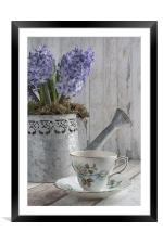 Hyacinth Teatime, Framed Mounted Print