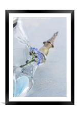 Forget Me Nots and Pen, Framed Mounted Print
