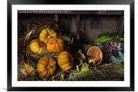 Pumpkins in a Basket, Framed Mounted Print