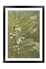 Muted Memories, Framed Mounted Print