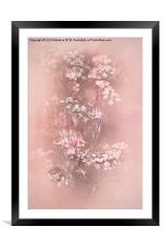Bouquet in Pastel Pink, Framed Mounted Print