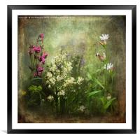 Wildflower Symphony, Framed Mounted Print