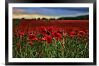 Field of Remembrance, Framed Mounted Print