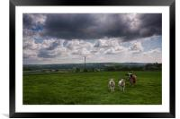 Sheep In The Stour Valley, Framed Mounted Print