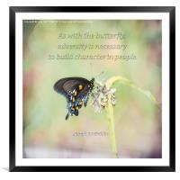 Building Character Butterfly, Framed Mounted Print