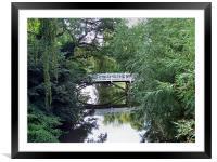 bridge, Framed Mounted Print