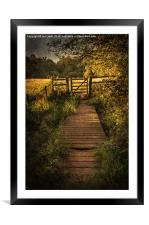 Gate into The Meadow, Framed Mounted Print