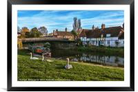 The Swan Family Visiting Hungerford, Framed Mounted Print