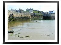 Low tide at Portsoy harbour, Framed Mounted Print