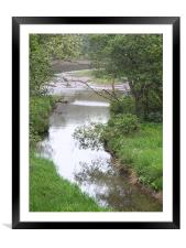 NATURE AT IT'S BEST, Framed Mounted Print
