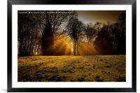 Winter rays, Framed Mounted Print