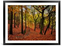The stepped autumn pathway, Framed Mounted Print