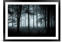 The Fog, Framed Mounted Print