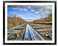 The Steel Rail Blues., Framed Mounted Print