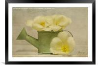Spring, Framed Mounted Print