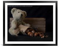 Little bear, Framed Mounted Print