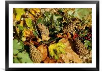 Shades of Autumn Colours, Framed Mounted Print