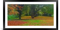 Simple what Autumn is all about , Framed Mounted Print