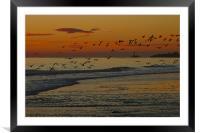 November Sunrise, Framed Mounted Print