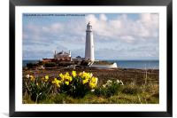 St Mary's Island in springtime, Framed Mounted Print
