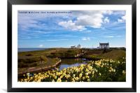 Harbour at Seaton Sluice, Framed Mounted Print